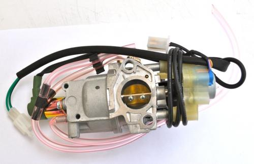Carburettor complete with stepper motor IG6000